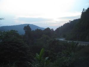 Dschungel Ranong