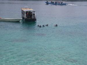 padi-Pulau-Weh