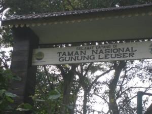 Leuser-Nationalpark-Bukit-Lawang