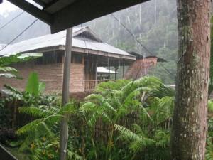 Regen-Bukit-Lawang
