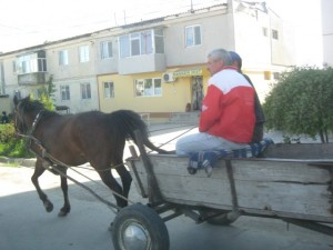 Cogealac Pferdekarren