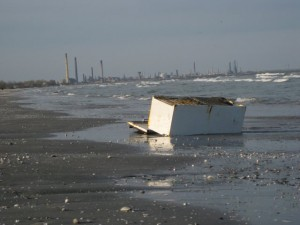 beach mamaia industrial fridge