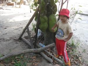 Kindsgroße Jakefruit