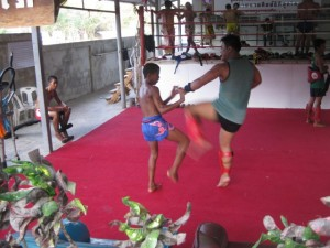 Muang-thai-trainer-hua-hin