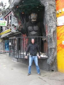 Gorilla Geiterbahn