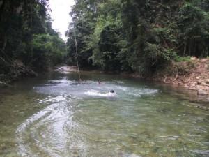 Wildwasser Bach